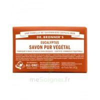 DR BRONNER'S PAIN DE SAVON EUCALYPTUS 140 G à Toulouse