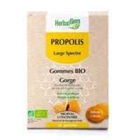 Herbalgem Propolis large spectre Gomme bio B/24 à Toulouse