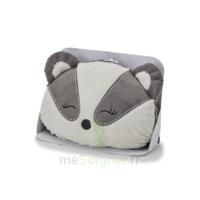 Soframar Manchon Bouillotte Panda à Toulouse
